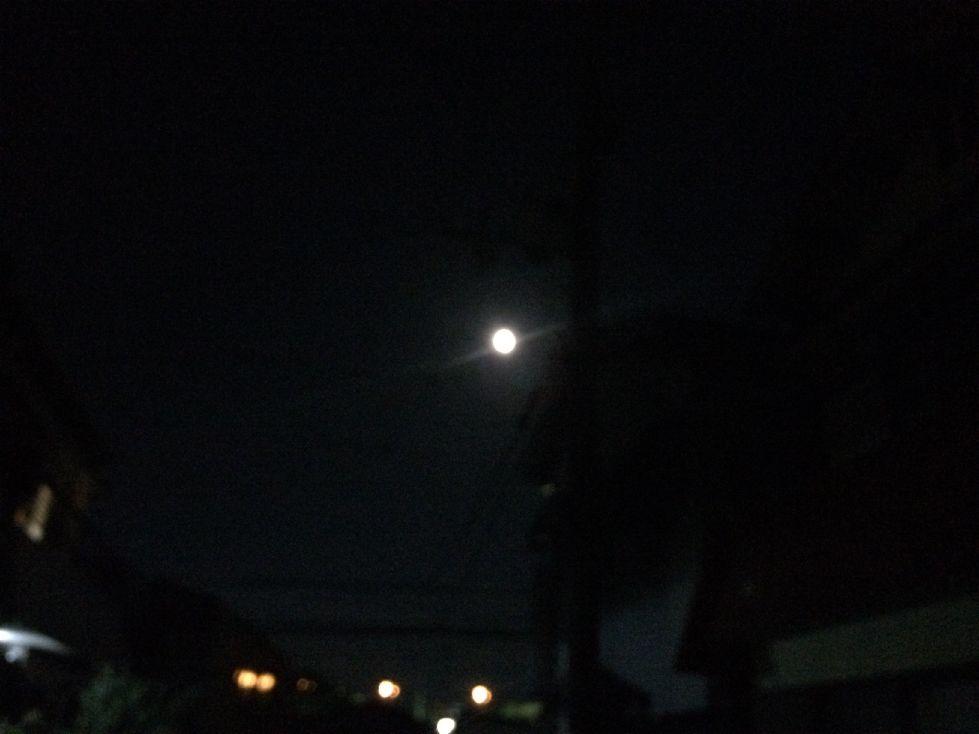 大きなお月様でした♪
