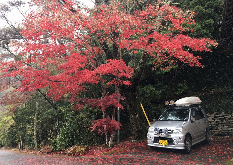 高野山の紅葉♪