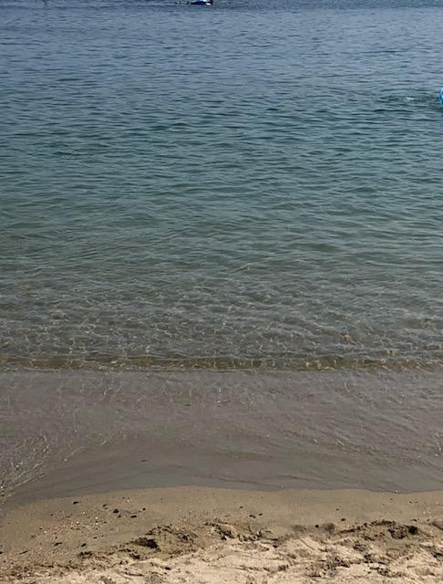 海に行ってきました♪