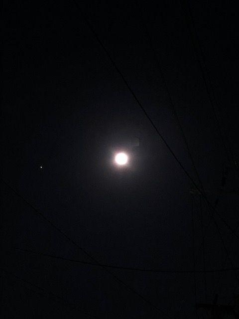 満月が綺麗です