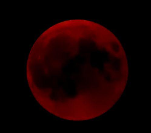 今日は満月、皆既月食です♪